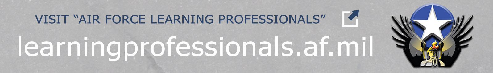Air Force Learning Professionals Banner link.